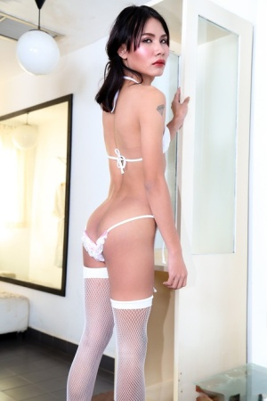 Shemale In Stockings Pics